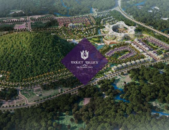 Dự án Thung lũng tím- Violet Valley